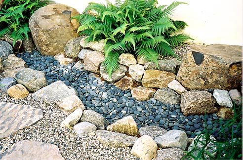 succulent rock garden ideas photograph rocks and succulents